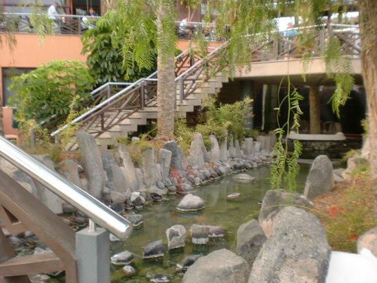 Hotel picture of melia jardines del teide costa adeje for Jardines tenerife