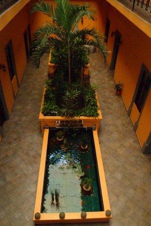 Hotel Morales Historical & Colonial Downtown Core: Espelho d'água com peixes