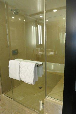 Thunderbird Lodge : Shower 6229