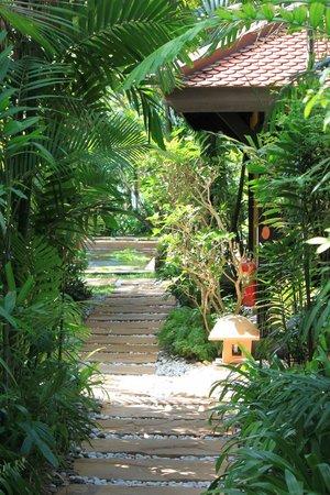 Dusit Thani Laguna Phuket: Vers le restaurant Thai