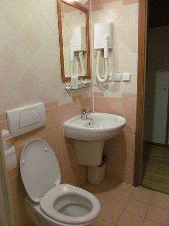 Residence Select Prague: bagno