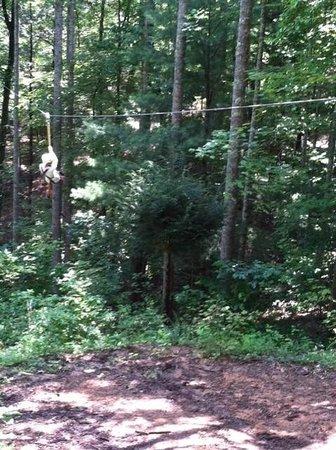 Canopy Ridge Farm: my son on the line