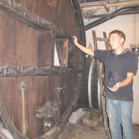 Hugel et Fils : We Tour The Winery with Marc Andre