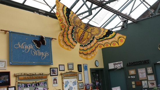 South Deerfield (MA) United States  city images : ... of Magic Wings Butterfly Conservatory and Gardens, South Deerfield