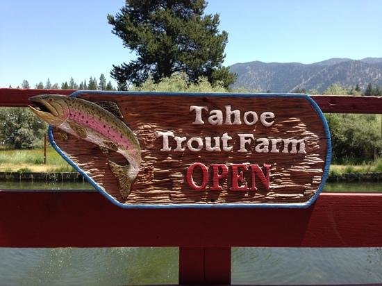 Tahoe Trout Farm: beautiful location