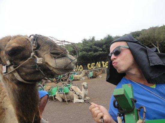Camello Center: besito al camello jeje