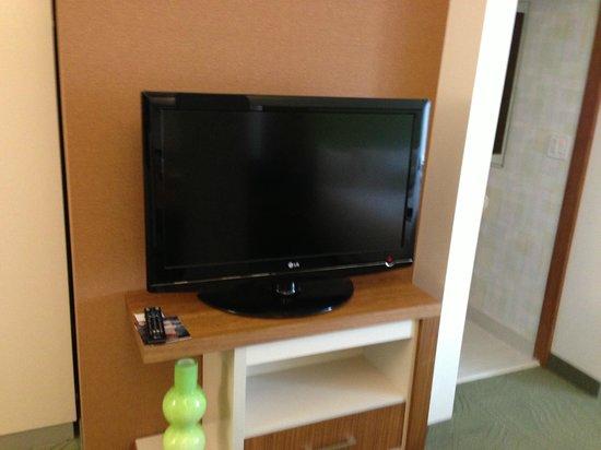 Staybridge Suites Houston IAH - Beltway 8: TV
