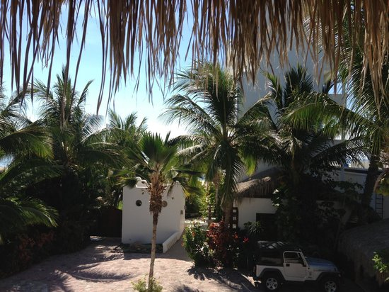 Casa Costa Azul Boutique Hotel: Courtyard and grounds