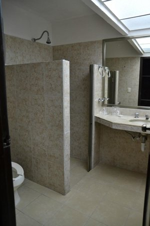 Hotel Plaza Mirador : bathroom