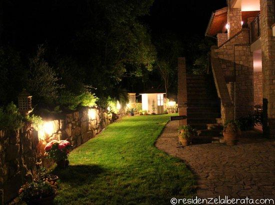 Residenze L'Alberata: Il giardino di notte