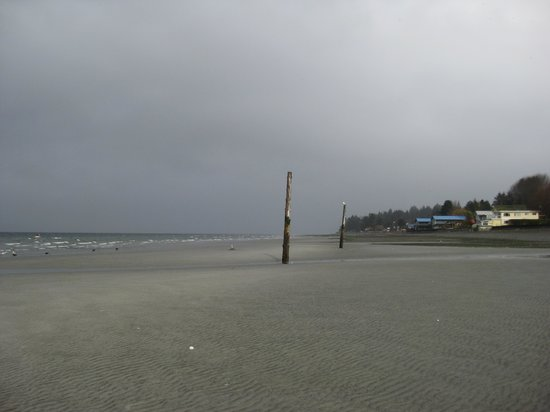 Beach Front Park: Beach at low tide.