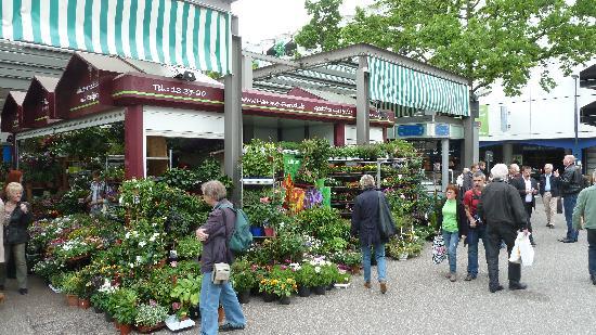 Carlsplatz Markt
