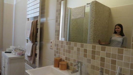 B&B Le Seize : просторная ванная