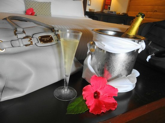 Zoetry Agua Punta Cana: Welcome Home Champagne at Zoetry!