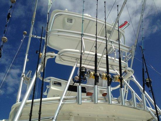 Fish Drake Bay - Reel Escape: Equipment