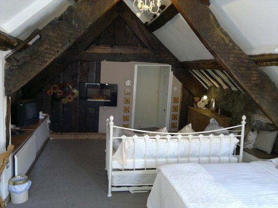 Plas Dolmelynllyn Hall Hotel: Glaslyn - a room from the earliest period of the hotel