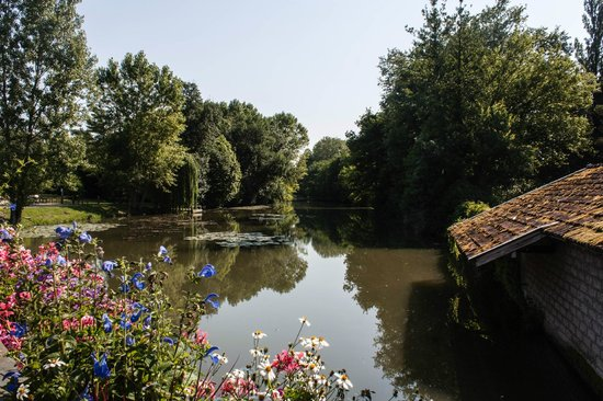 Residence des Saules : River at Vonnas