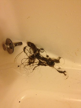 Beaumont, TX: The Hair That was Clogging the shower drain, that belonged to neither of us.