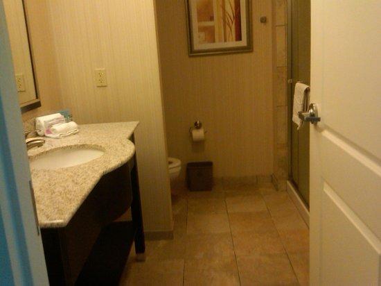 Hampton Inn & Suites Phoenix North/Happy Valley: Bathroom, no tub