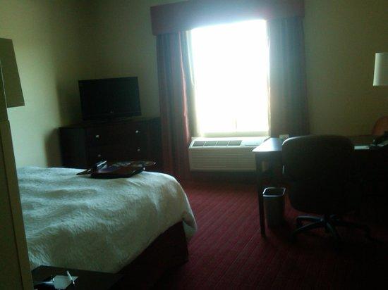 Hampton Inn & Suites Phoenix North/Happy Valley: Bedroom