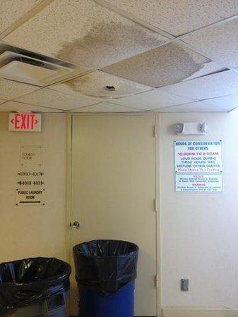 Ocean East Resort Club: 4th floor ceiling leak by elevators