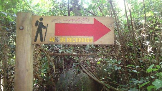 Camping Tayrona: camino