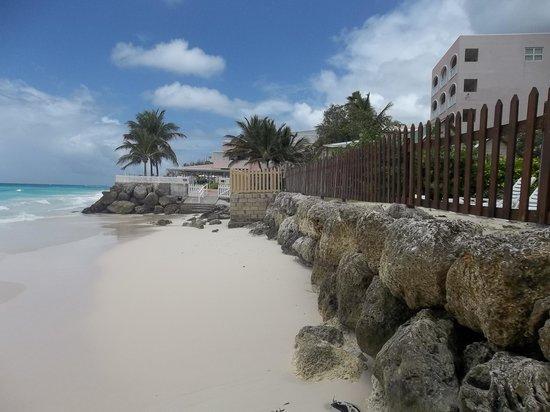 Maxwell Beach Apartments: Beautiful beach