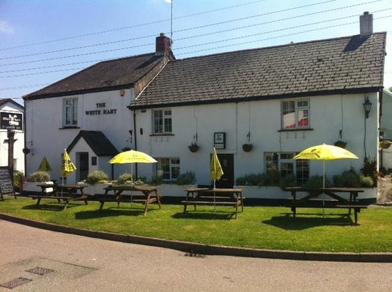 Okehampton, UK: The White Hart Inn, Bridestowe.