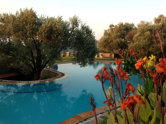 Antik Zeytin Hotel & Art: Pool area with olive trees and flowers