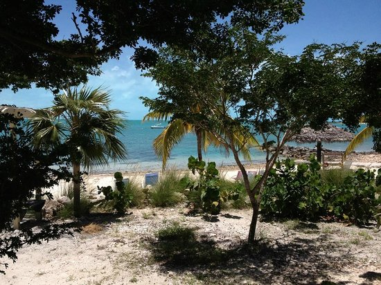 Grotto Bay Bahamas: Beach from deck steps