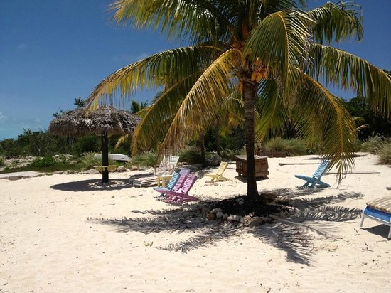 Grotto Bay Bahamas: Beach at Grotto Bay