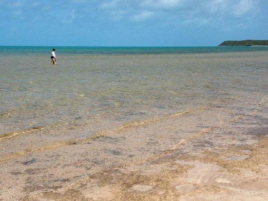 Grotto Bay Bahamas: Nearby flat with bonefish.