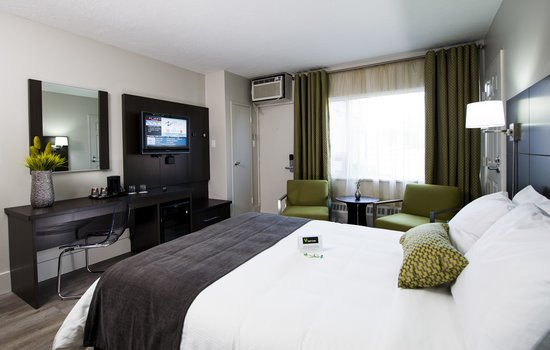 V Hotel and Suites: Renovated Deluxe Room With 1 Queen Beds