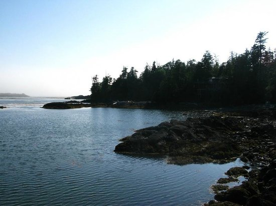 Bostrom's B&B On Little Beach Bay : View from the ocean deck (3)