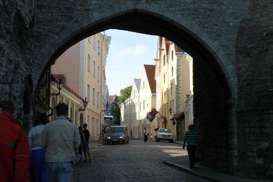 Long Street (Pikk tanav)