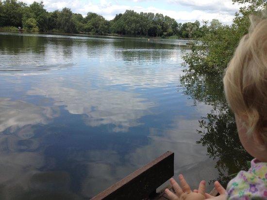 Eastrington Ponds