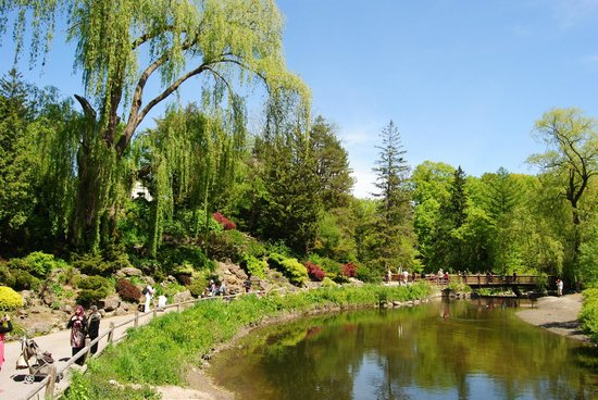 Toronto Botanical Garden Wonderful Scenery Dictionary Words Are Not Able To Express