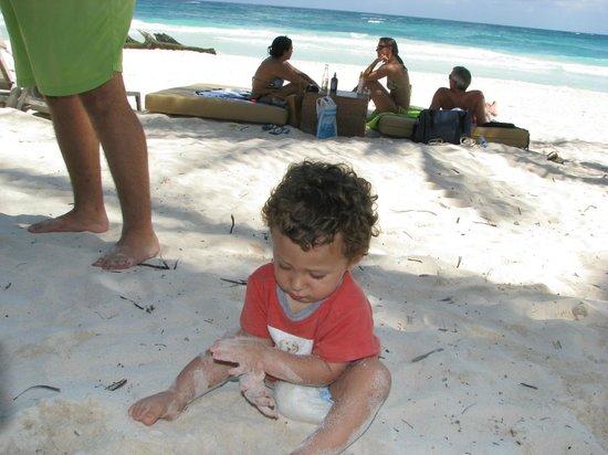 Coral Maya: Alfredo manjarrez