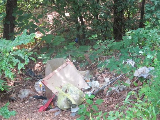 Motel 6 Cleveland TN: garbage dump by my room