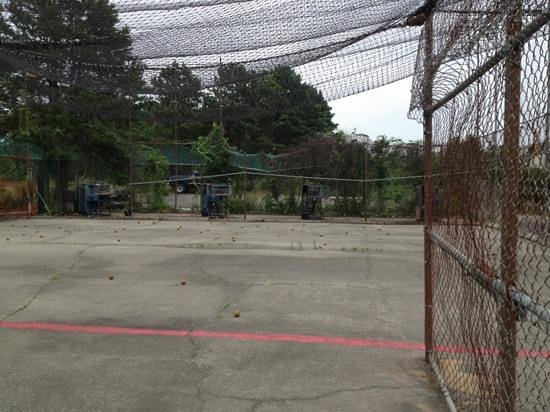 Cartland of Cape Cod: batting cage yuck!!!!