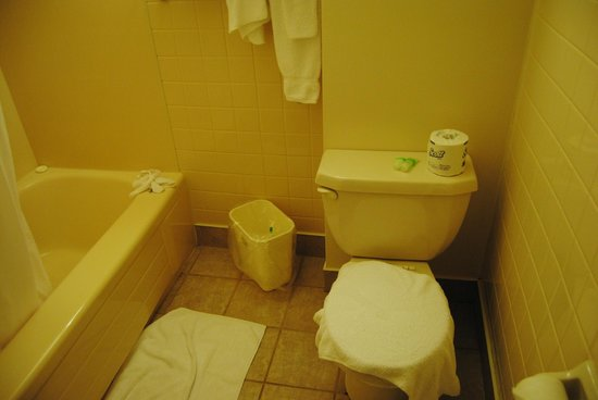 Best Western Plus Cairn Croft Hotel : Outdated, dimly lit bathroom