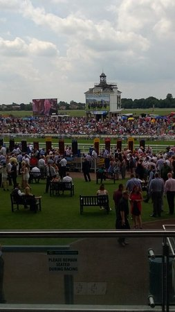 York Racecourse : A near capacity crowd enjoying the sun