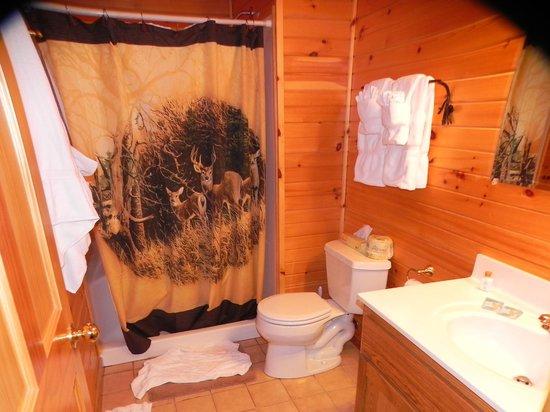 Winfield Inn: Spotless bathroom