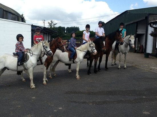 At The Carriogonal Castle Picture Of Clarina Equestrian