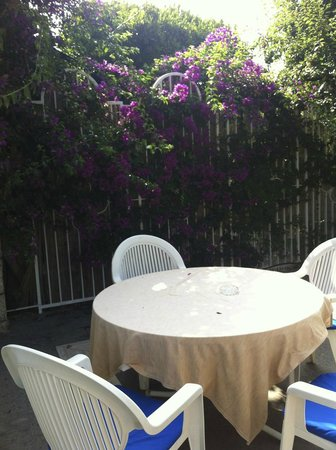 Hotel 'A Pazziella: Jardim