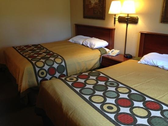 Super 8 Maysville : Guest Room