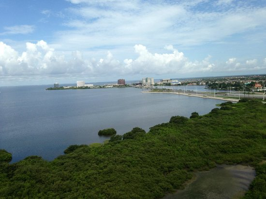 Grand Hyatt Tampa Bay: Looking out at the bay