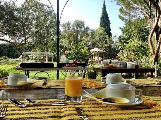 Le Temps des Olives: Viajar é preciso ...