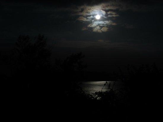 Bay of Plenty Lodge: full moon
