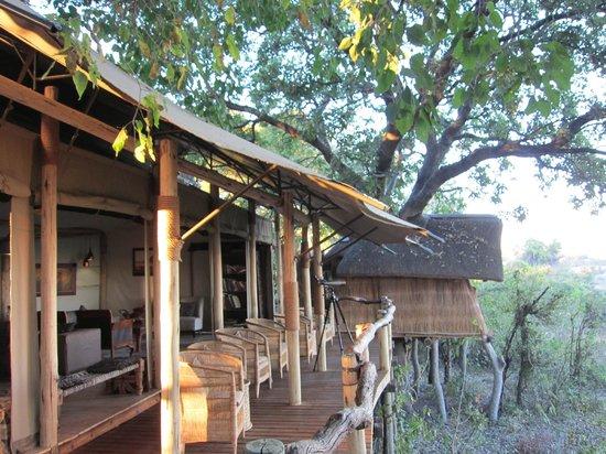 Tubu Tree Camp: the lounge